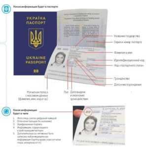 Какие страницы паспорта нужно копировать